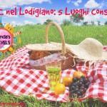 PIC NIC nel Lodigiano: i 5 Luoghi Consigliati!