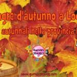Sagre d'autunno a Lodi: gli eventi autunnali nella provincia Lodigiana