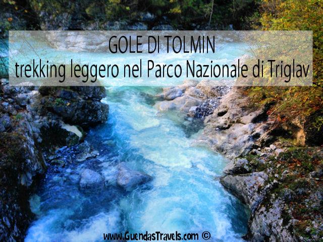 GOLE DI TOLMIN