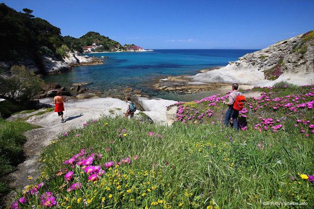 5 motivi per visitare l'Isola d'Elba natura