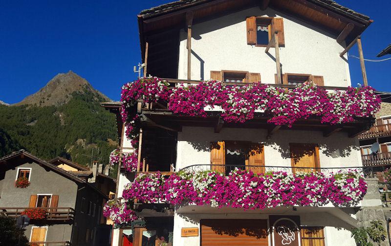 autunno a cogne balconi fioriti