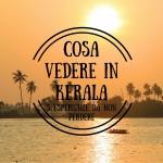 Cosa vedere in Kerala: 5 esperienze da non perdere
