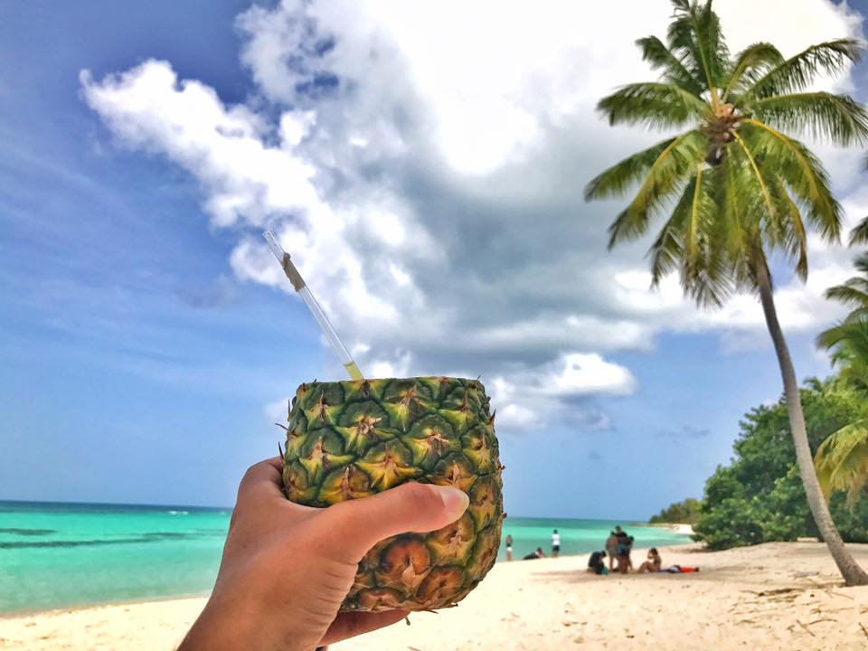 isla saona ananas