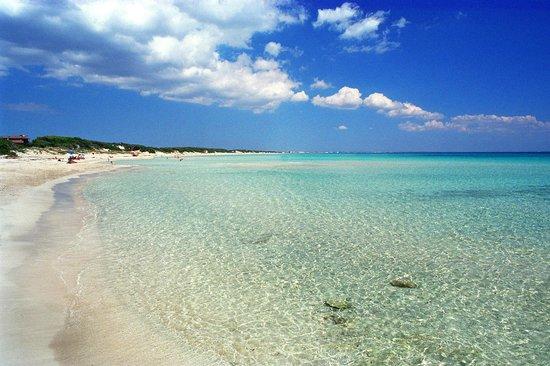 costa adriatica da nord a sud punta prosciutto