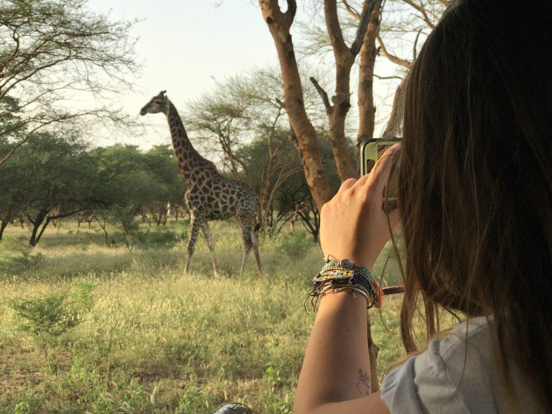 riserva di bandia in senegal giraffa