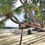 Samura Maldives: la guesthouse da sogno di Thulusdhoo
