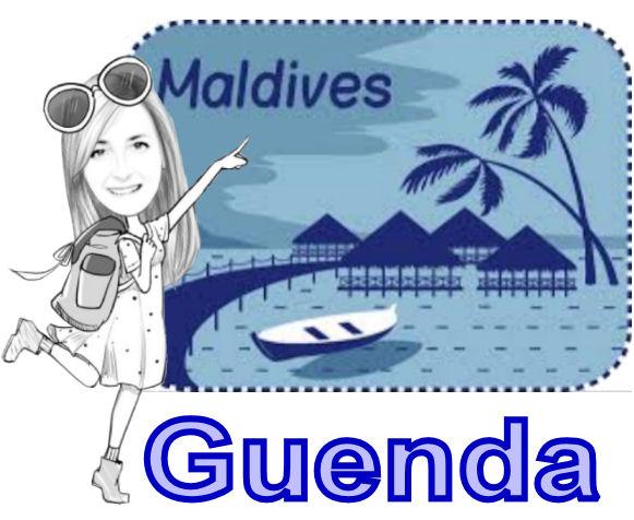 logo maldive