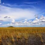 USA: TOUR FLORIDA 2012 – Part 4 – EVERGLADES