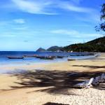 KOH TAO: l'isola delle tartarughe