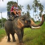 KOH SAMUI: alla scoperta dell'isola Thailandese