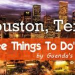 12 Cose da fare GRATIS a Houston!