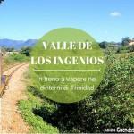 VALLE DE LOS INGENIOS: in treno a vapore nei dintorni di Trinidad
