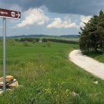 La Via Francigena in bicicletta: consigli pratici su come organizzarla